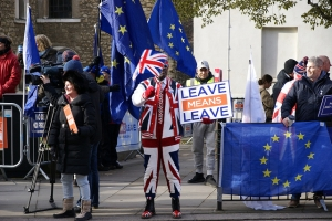 Leave Supporter, Westminster