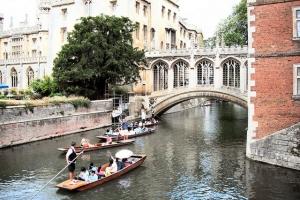 A few more punts in Cambridge