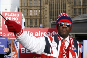 Brexit Demonstrator in Westminster