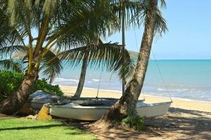 Palm Cove, Queensland, Australia