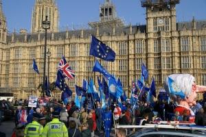 Westminster Brexit Protestors