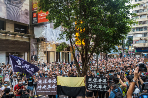 Hong Kong Demonstration 1 July 2020