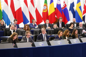 MEPs concerned in European Parliament