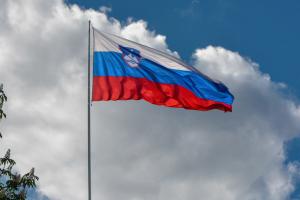 Slovenian Flag