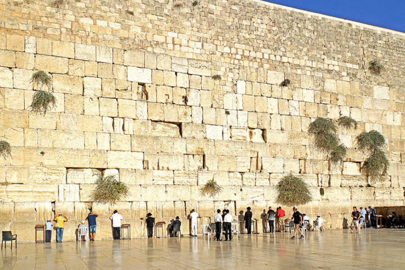 Israel-06898 - Wailing Wall