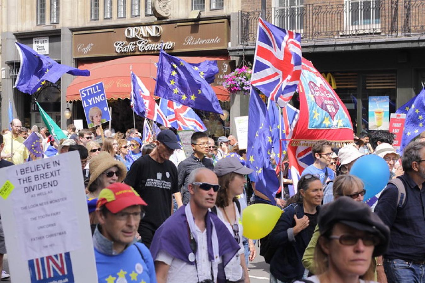 Brexit Demonstration
